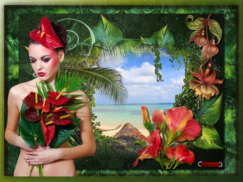 Parfums exotiques