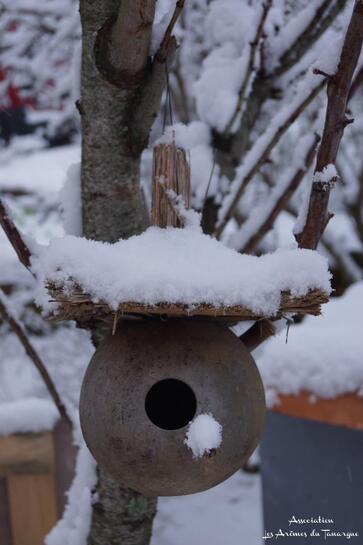 Quelques photos de l'épisode neigeux du 18 janvier 2016