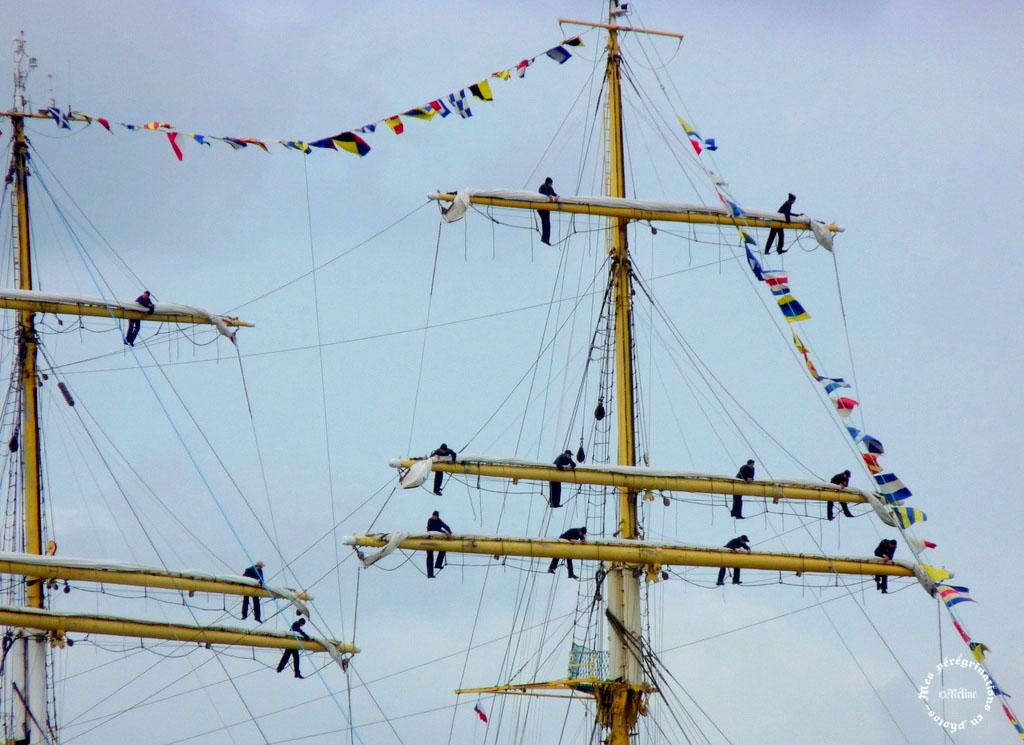 L'Armada des Voiliers et des hommes - ROUEN (33)