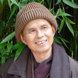 http://wordsworthbooks.com/wp-content/uploads/2013/07/thichnhathanh.jpg