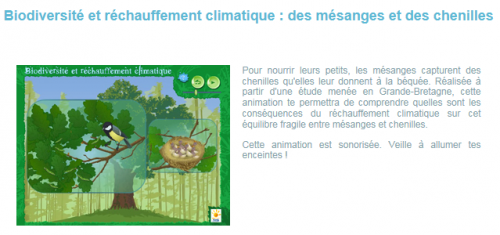 Animations biodiversité