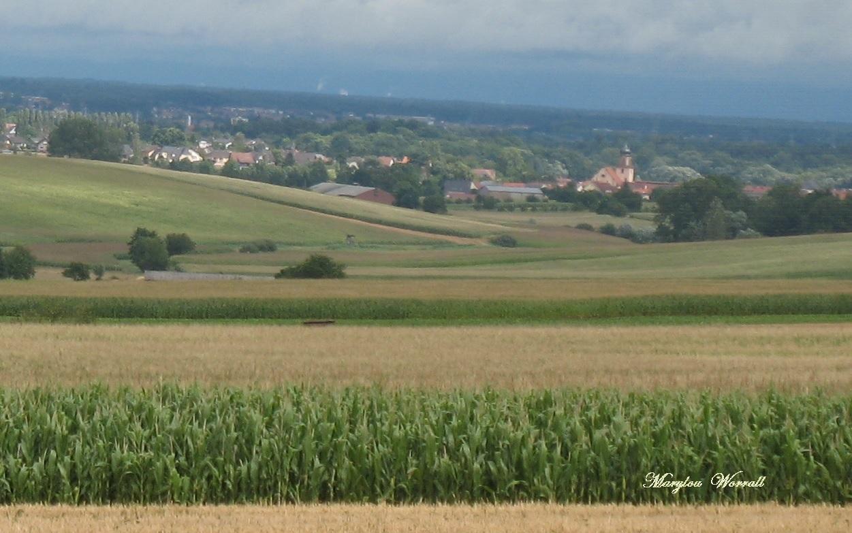 Kochersberg : Neubourg (67)