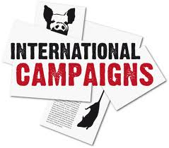 logo-international-campaigns[1]