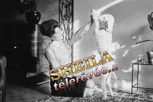 Février 1964 : Sheila joue avec Miel.