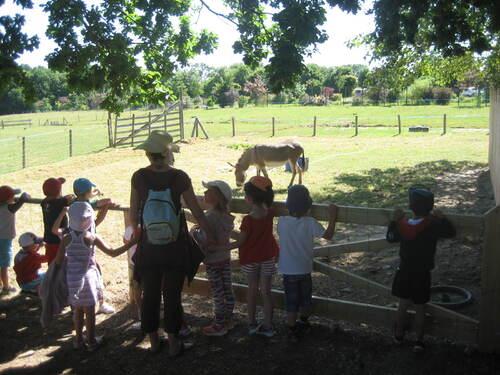 Sortie scolaire du mardi 4 juillet aux Jardins de Treffendel