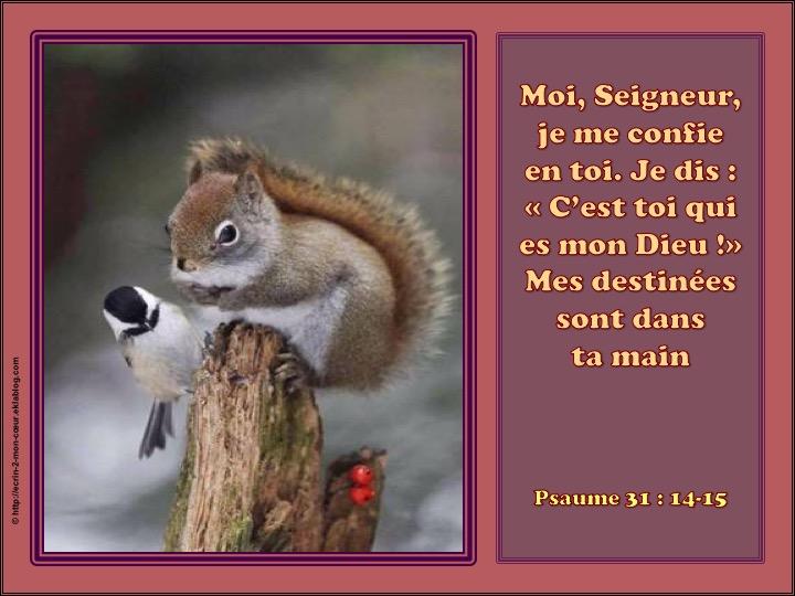 Seigneur, je me confie en toi - Psaumes 31 : 14-15