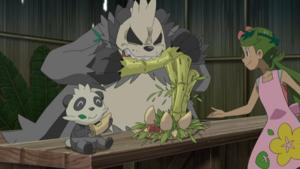 Pokémon Sun & Moon épisode 120 VOSTA + épisodes 118 et 119 VOSTFR en Streaming