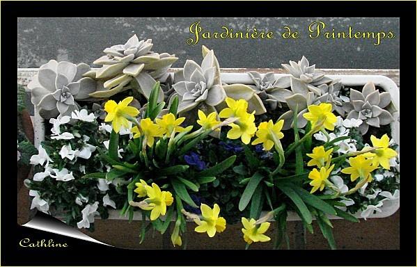 jardiniere-de-printemps-1.jpg