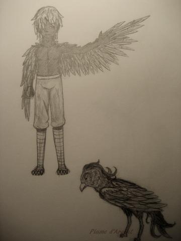 Les Phoenix