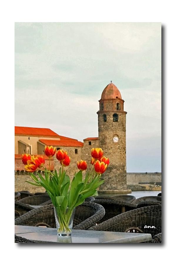 Un peu de Collioure