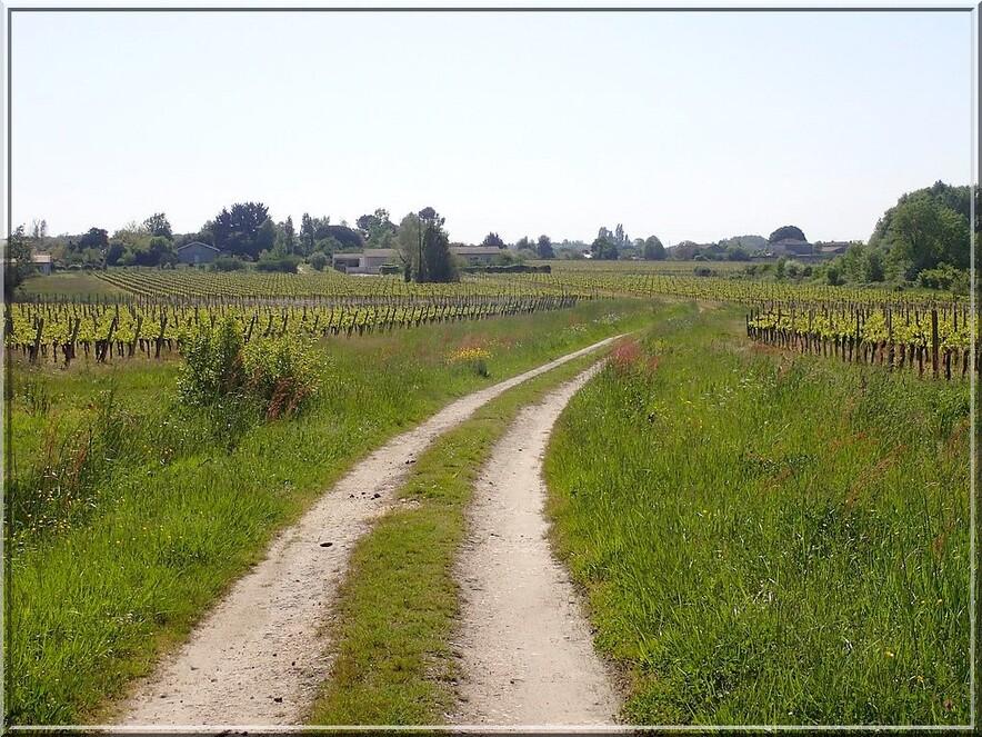912 - Suite15 : -Notre Chemin vers St Jacques de Compostelle à travers ses anecdotes-