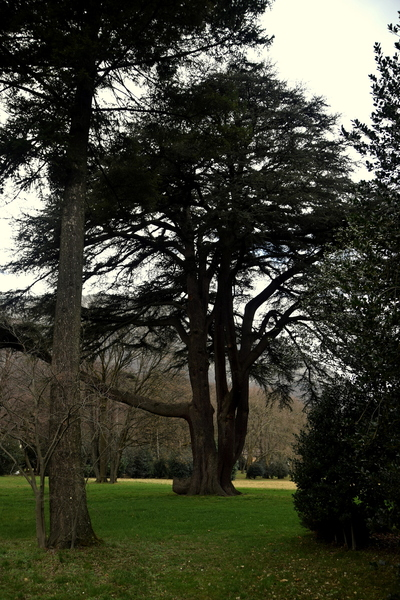 2016.01.13 Parc et château de Sassenage (Isère)
