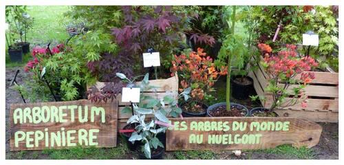 La fête des plantes au Stang-Alar, photos d'ambiance