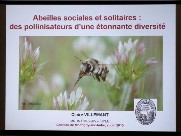 Une passionnante conférence sur les abeilles a eu lieu au Château de Montigny sur Aube