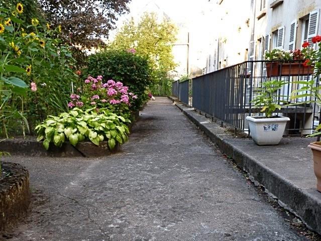 Jardin de curé église Saint-Martin Metz 2011 - 22