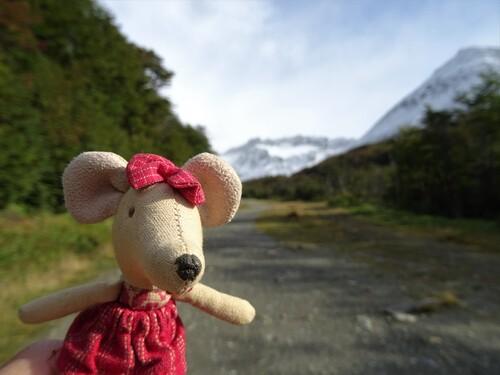 Une matinée à la montagne avec en prime de la neize estivale!