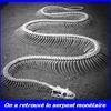 serpent monétaire.jpg