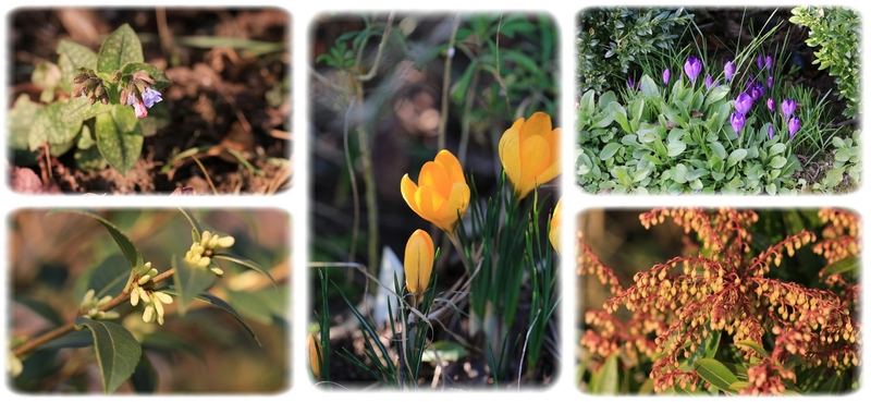 Comme un petit air de printemps