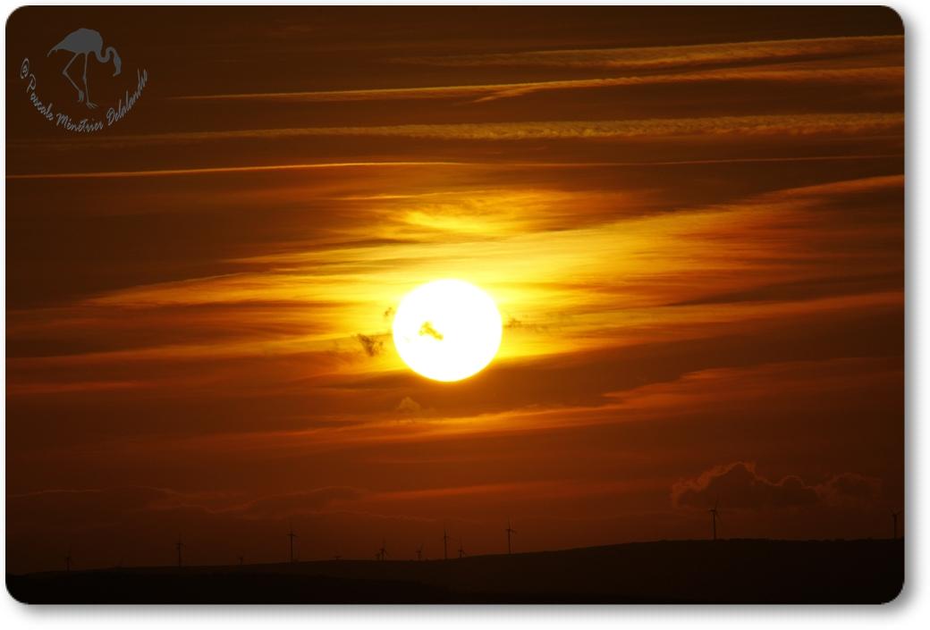 Coucher du soleil sur Carnon...