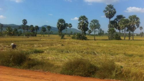 J101. 17 décembre, de Koh Tonsay à Phnom Penh