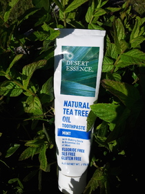 ° Dentifrice au Tea Tree Desert Essence