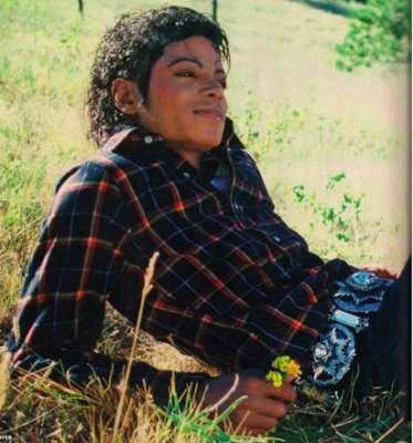 Neverland Son Paradis