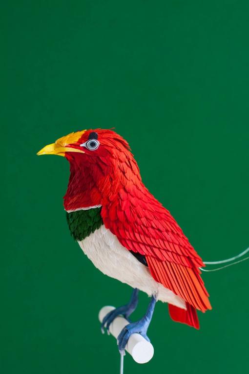 Diana Beltran Herrera-birds-paper-numerik3.jpg