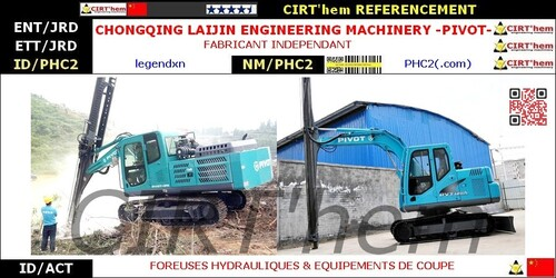 CHONGQING LAIJIN ENGINEERING MACHINERY -PIVOT-