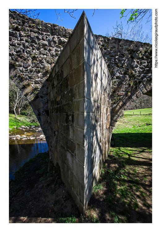 Itinérant en pays ligérien (Loire) IV