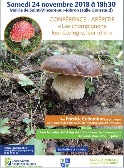 *Samedi 24 novembre 18h30 à st Vincent, CONFERENCE LES CHAMPIGNONS, leur écologie, leur rôle, animée par Patrick Colombon mycologue.