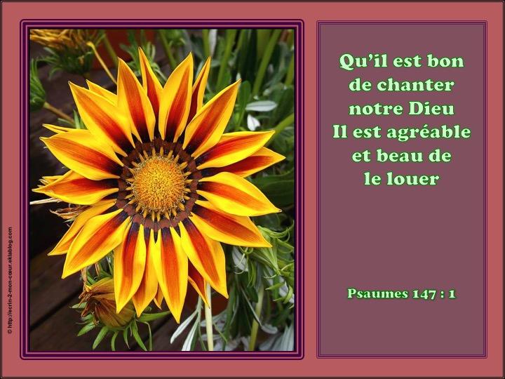 Qu'il est bon de chanter notre Dieu - Psaumes 147 : 1