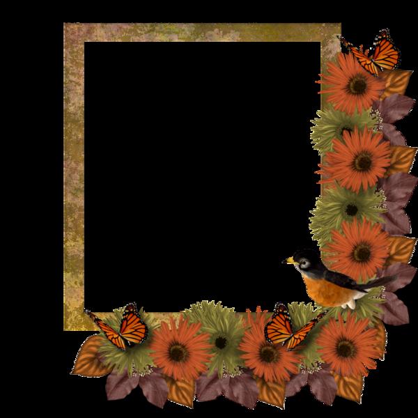 Cadre vierge fleuri