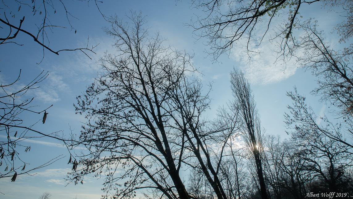 Le Vernois par temps froid