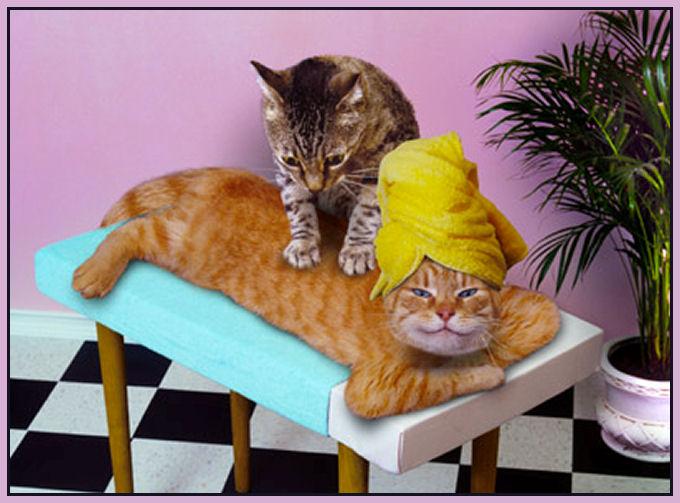 Un petit massage.