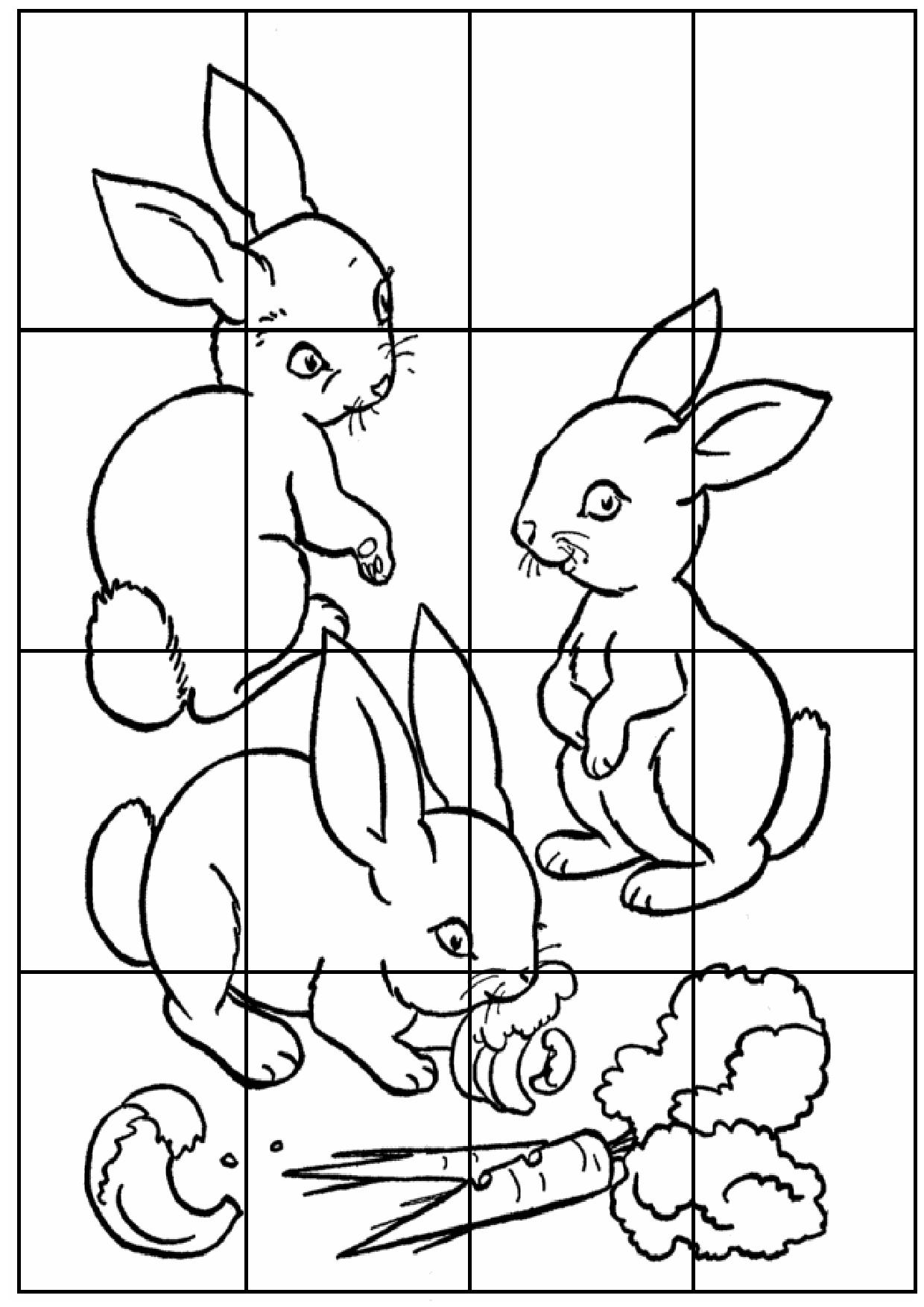 Puzzles A Decouper Et A Colorier Puzzles Cp Ce1 Animaux