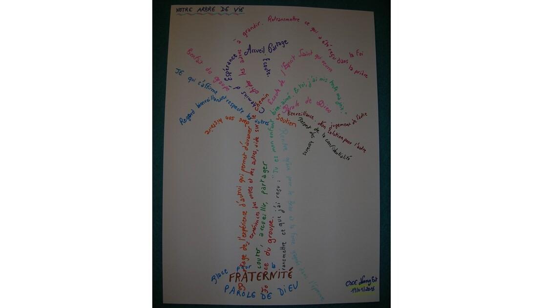 L'arbre de vie du groupe