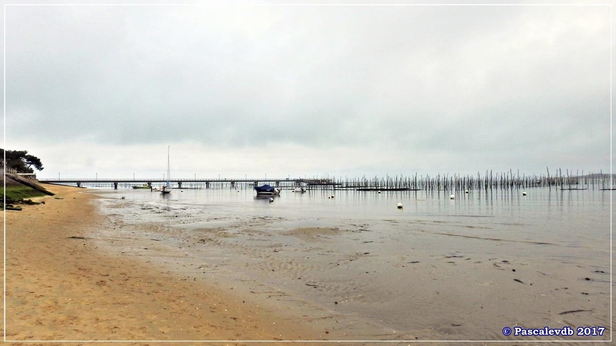 Traversée du Bassin entre Arcachon et le Cap Ferret - 7/14