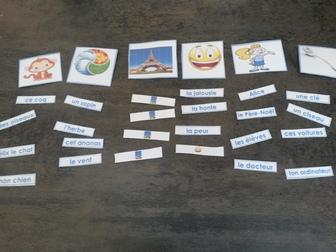 Atelier sur les catégories du nom