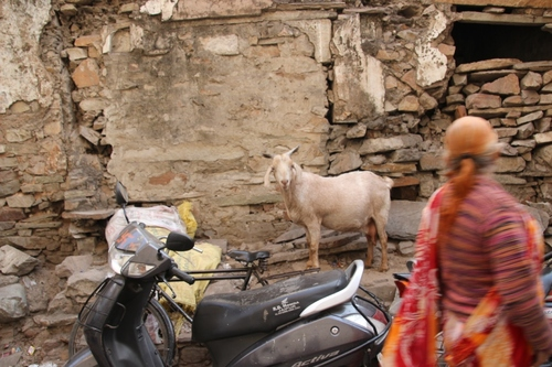 Dans les rues de Jaipur, suite