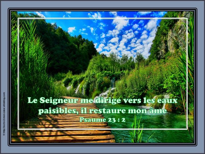Le Seigneur me dirige et me restaure - Psaumes 23 : 2