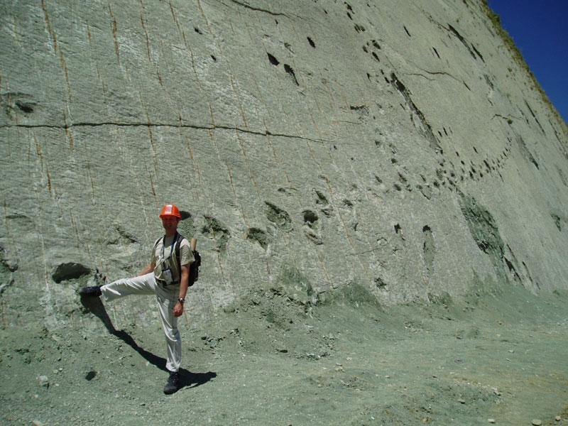 Dinosaures:  Bolivie: 5000 empreintes de dinosaures sur un mur de 100 mètres de haut