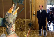 foie gras hollande