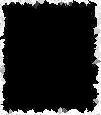Motifs Noirs sur fond Blanc série 1