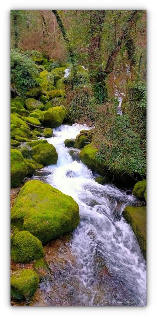 Florac trois rivières : La Source du Pêcher