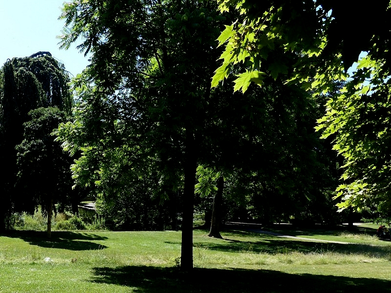 Metz / Suite d'une promenade d'été sous les arbres / 2...