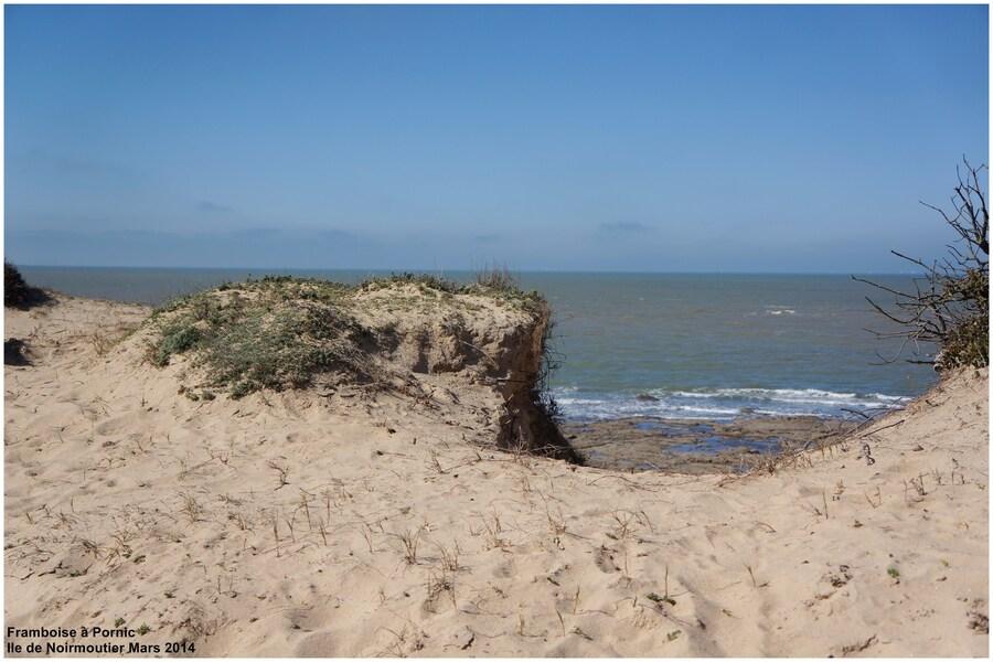Balade à Noirmoutier