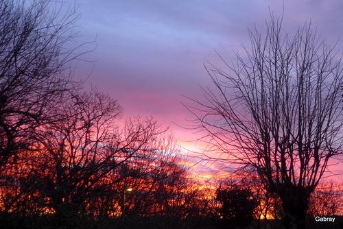 Le ciel du matin …
