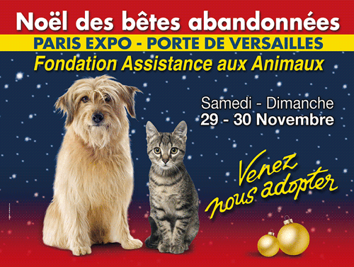 adopter chien chat