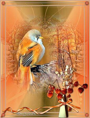 Pinson orange
