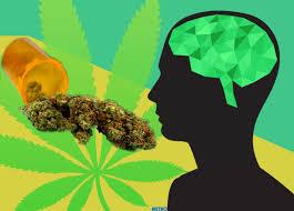 """Résultat de recherche d'images pour """"cannabis"""""""